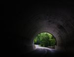 Exiting a tunnel on a highway near trees at daytime.