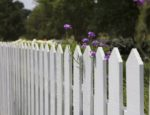 White picket fence and flowers on a sunny day.