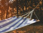 A hammock hanging in a clearing.